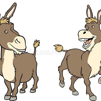 Profile funny cartoon donkey illustration shows two poses 40759255