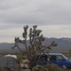 Thumb mojave desert national preserve   copy