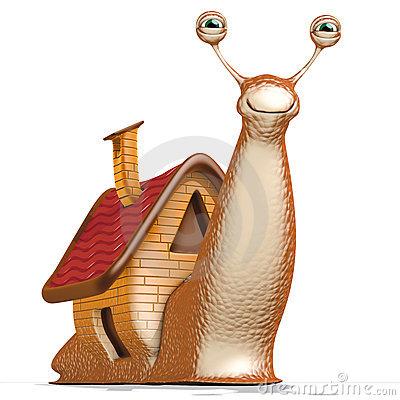 Snail house 14930732