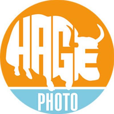 Profile hageyak tw