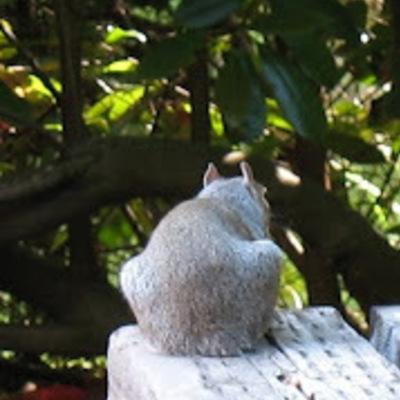 Profile stumpy