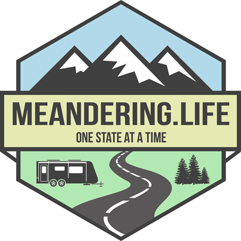 Meandering life image