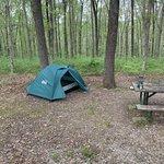 Meriwether lewis campground