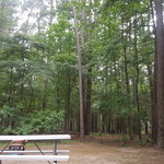 Atlanta state park
