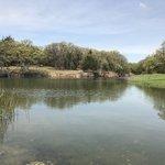 Black creek lake
