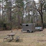 Boles field campground sabine nf