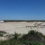 Bryan beach freeport tx