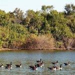 Cedar point recreation area