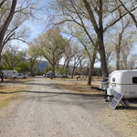 Cottonwood campground big bend np