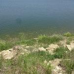 Eisenhower state park texas