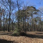 Indian mounds recreation area
