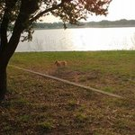 Lakeside campground coleman tx