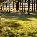 Lake hawkins county rv park