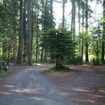Moss creek campground