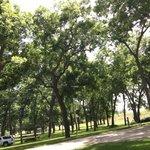 Lake wood recreation area