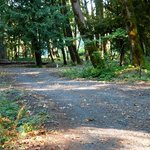 Big cedars county campground