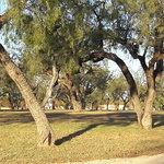 Middle concho park