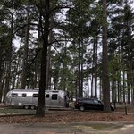 Piney point campground wright patman lake