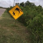 Quintana beach county park