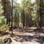 Gull point campground