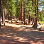 Wyeth campground deschutes nf