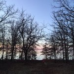 South sulphur campground