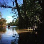 Village creek state park texas
