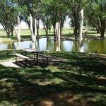 Yoakum county park
