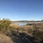 Alamo lake state park
