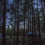Forest road 4610