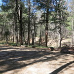 Blue ridge campground coconino nf