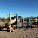 Cholla campground