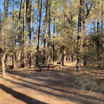 Coal creek campground
