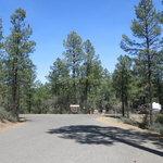 Hilltop campground prescott nf