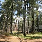 Los burros campground