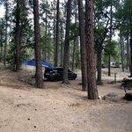 Lower wolf creek campground