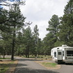 Pinegrove campground coconino nf