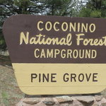 Pinegrove campground coconino nf