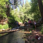 Upper canyon creek campground