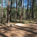 Upper tonto creek campground
