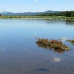 Colorado campground pike nf