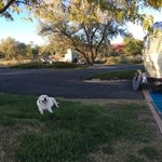 Fruita campground colorado river state park