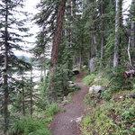 Island lake campground grand mesa nf