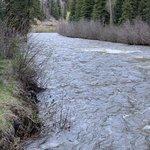 Park creek campground rio grande nf