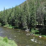 Spring creek campground gunnison nf