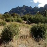Aguirre springs campground