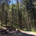 Black canyon campground santa fe nf