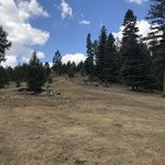 Borrego mesa campground
