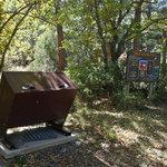 Bosque campground