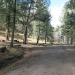 Iron creek campground gila nf